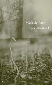 mule Good bye 2011: Best Short Stories, Poetry Not To Miss, Fiction in Translation