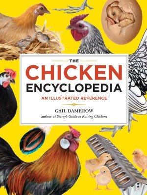 chicken encyclopedia Reference Short Takes, March 1, 2012