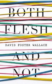 davidfoster Barbaras Picks: November 2012, Pt. 2: Roberto Bolaño and David Foster Wallace