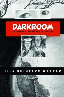 darkroom Graphic Novel News & Reviews, July 2012