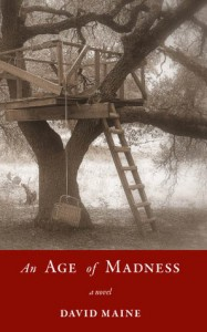ageofmadness 187x300 Twenty Great Reads for National Reading Group Month