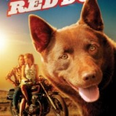 red dog