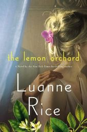rice Fiction Previews, Jun. 2013, Pt. 1: Great Beach Reads from Andrews, Hilderbranch, Weisberger, and More