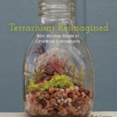 terrariums0517