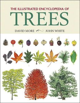 Trees Reference Reviews | August 2013