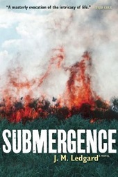 submergence1 The Possibilities of Africa: A Talk with Author/Journalist J.M. Ledgard