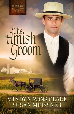 groom Christian Fiction Sees the Light