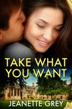 takewhatyouwantbest2013 Best Books 2013: Ebook Romances