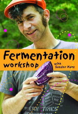 fermentation021914 Count Your Chickens | Urban Farming & Homesteading