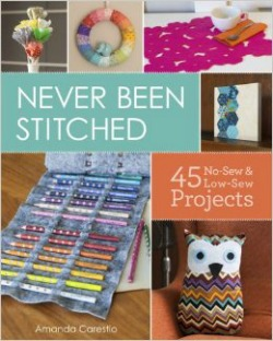 neverbeenstitched021314 Crafts & DIY Reviews | February 1, 2014