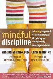 mindfuldiscipline041114 Sound Advice on Life (Pauley, Huffington), Shapiro & Whites Mindful Discipline, & More | Self Help Reviews