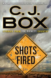 shotsfired051714 Novels by Librarians Bogino, Thomas, Box Short Stories, Fenollera, Kubica, Weiner, & More | Fiction Reviews