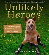 UNLIKELYHEROES Quirky Books for Quirky Librarians | United for Libraries, ALA 2014
