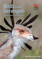 birdsoftheserengeti060514 Wagner Encyclopedia, Environmental Literacy, Animals & Birds of the Serengeti | Reference Short Takes