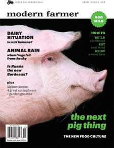 MF_cover_newsstand_14_0203.indd