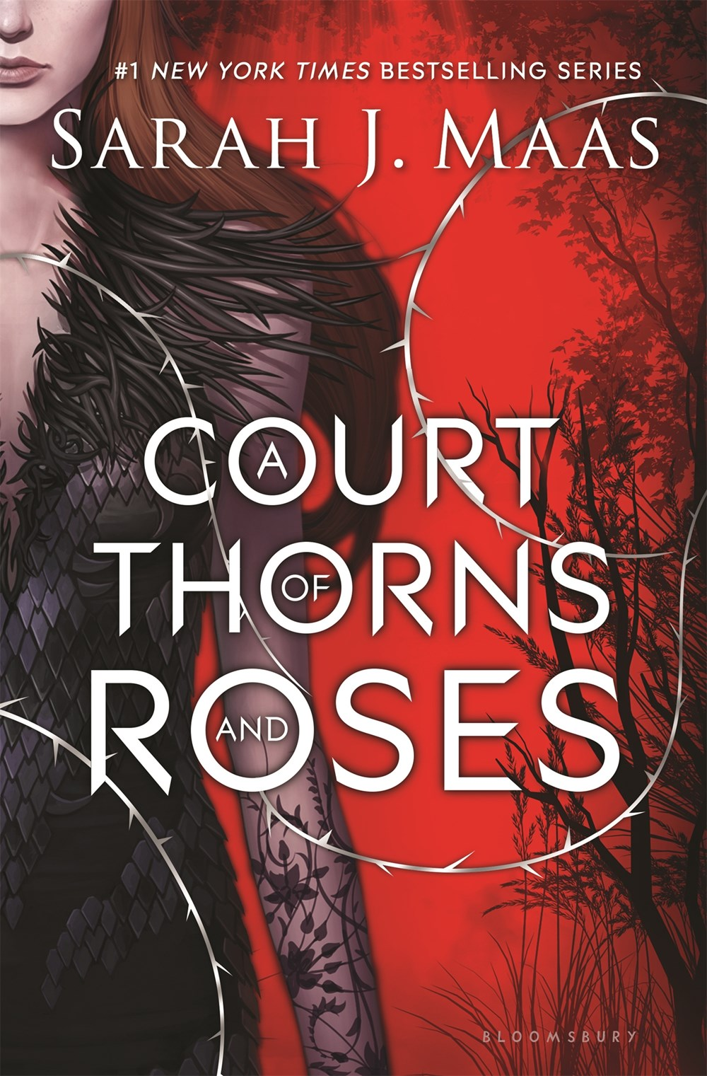 Image result for court of throne and roses